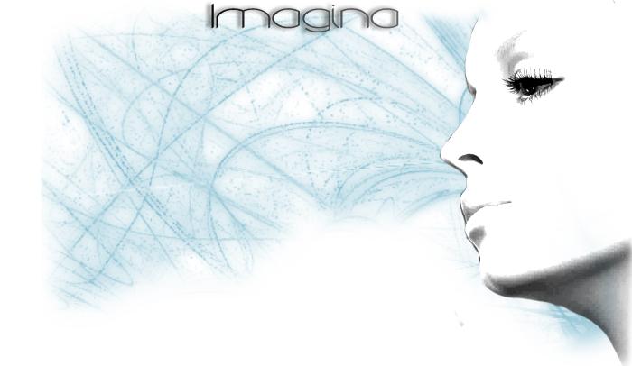 perfil_imagina